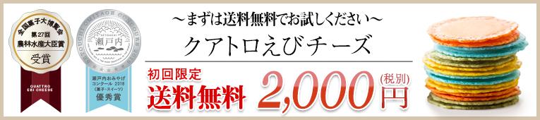 初回限定 送料無料 2000円!